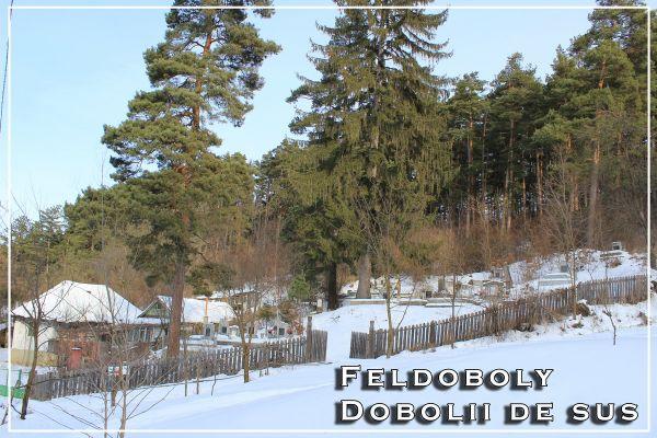 feldoboly1-resize586F0A0B-4F63-12B9-3BA3-13F453278ED1.jpg